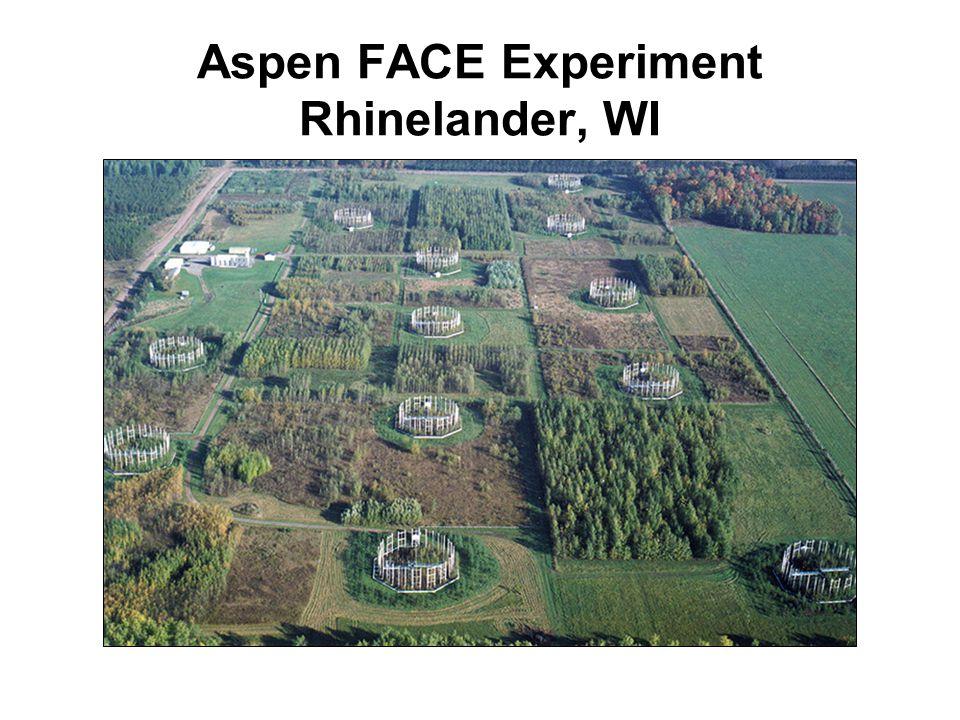Aspen FACE Experiment Rhinelander, WI