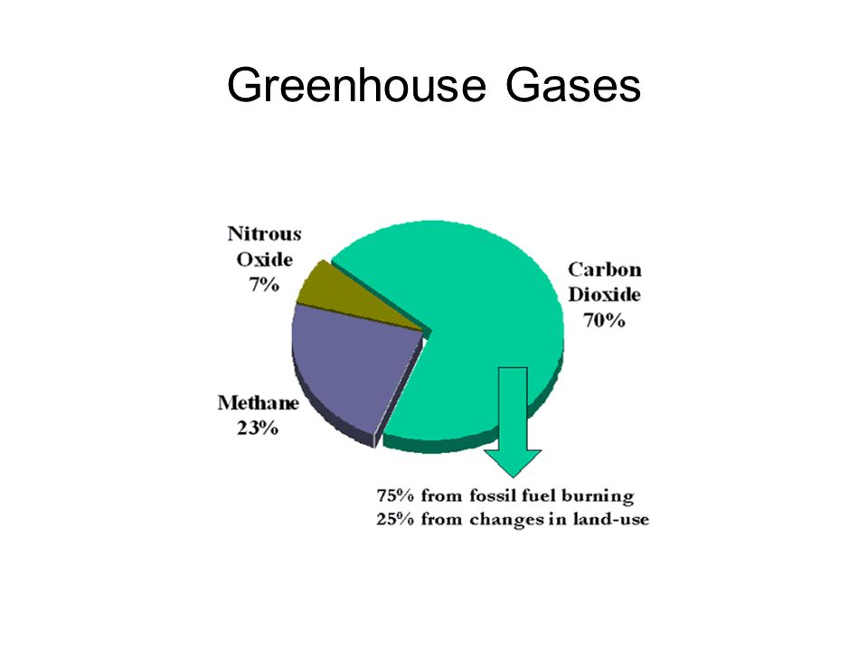 Major Sources of CO 2