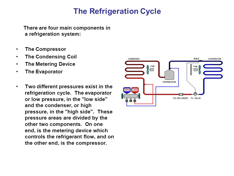 The Compressor The compressor is the heart of the system.