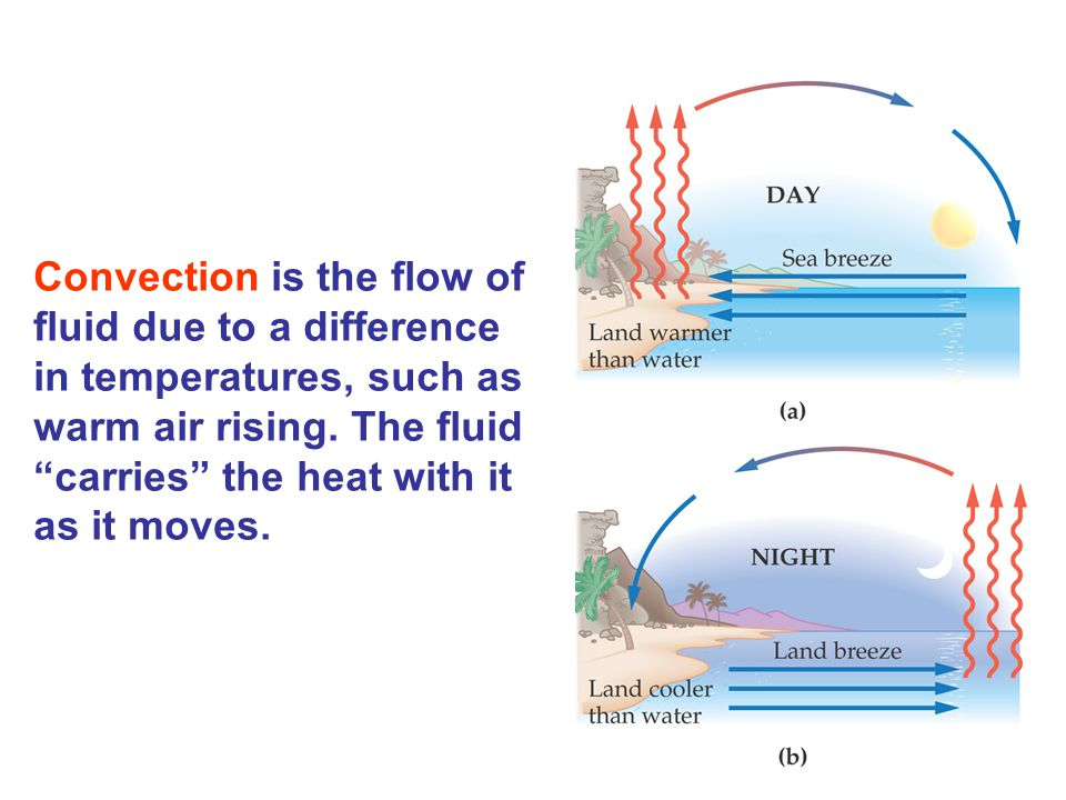 Convection is the flow of fluid due to a difference in temperatures, such as warm air rising. The fluid carries the heat with it as it moves.