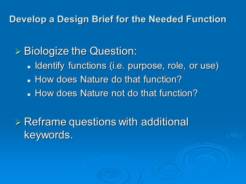 Develop a Design Brief for the Needed Function Biologize the Question: Biologize the Question: Identify functions (i.e.