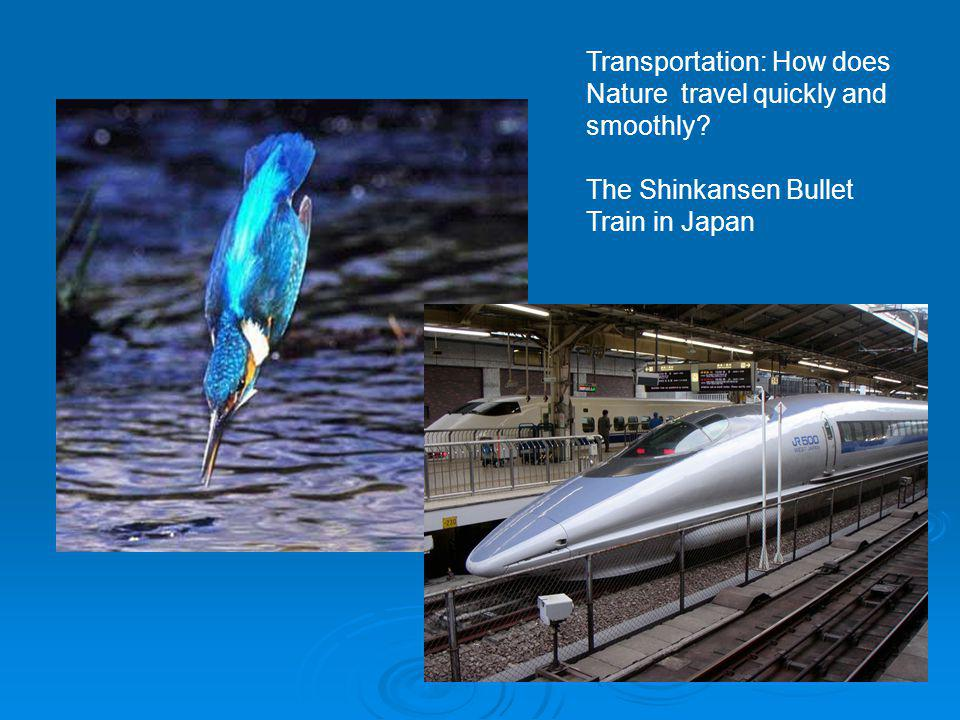 Transportation: How does Nature travel quickly and smoothly? The Shinkansen Bullet Train in Japan