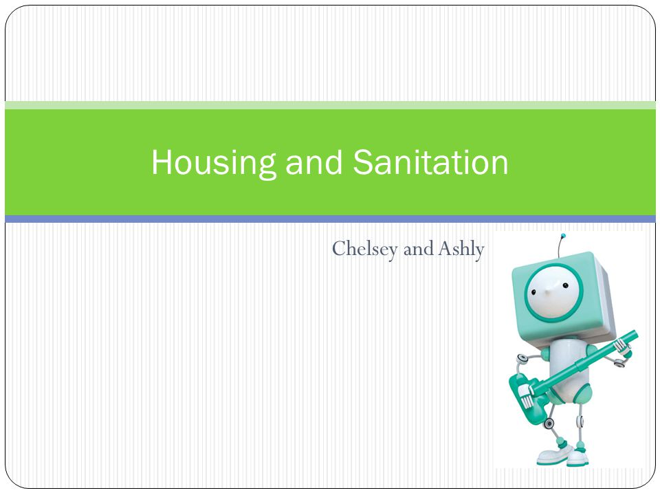 Chelsey and Ashly Housing and Sanitation
