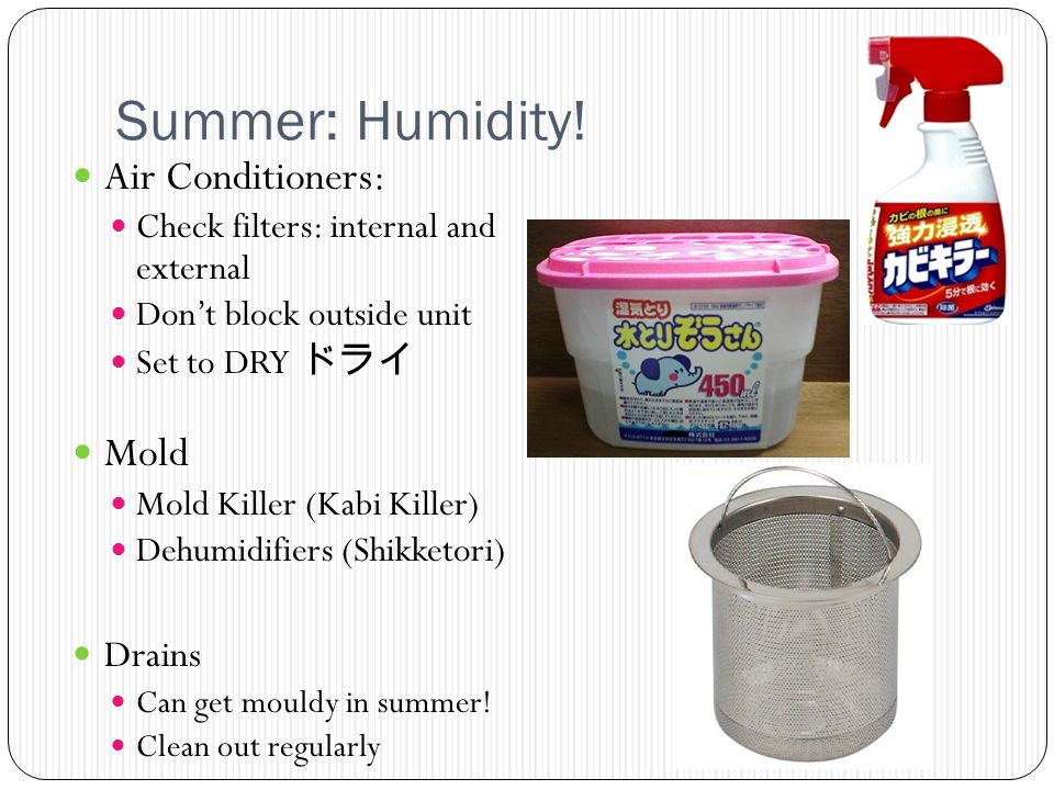 Summer: Humidity! Air Conditioners: Check filters: internal and external Dont block outside unit Set to DRY Mold Mold Killer (Kabi Killer) Dehumidifie
