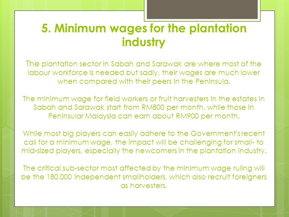 4. Pinching of workers among plantations firms.