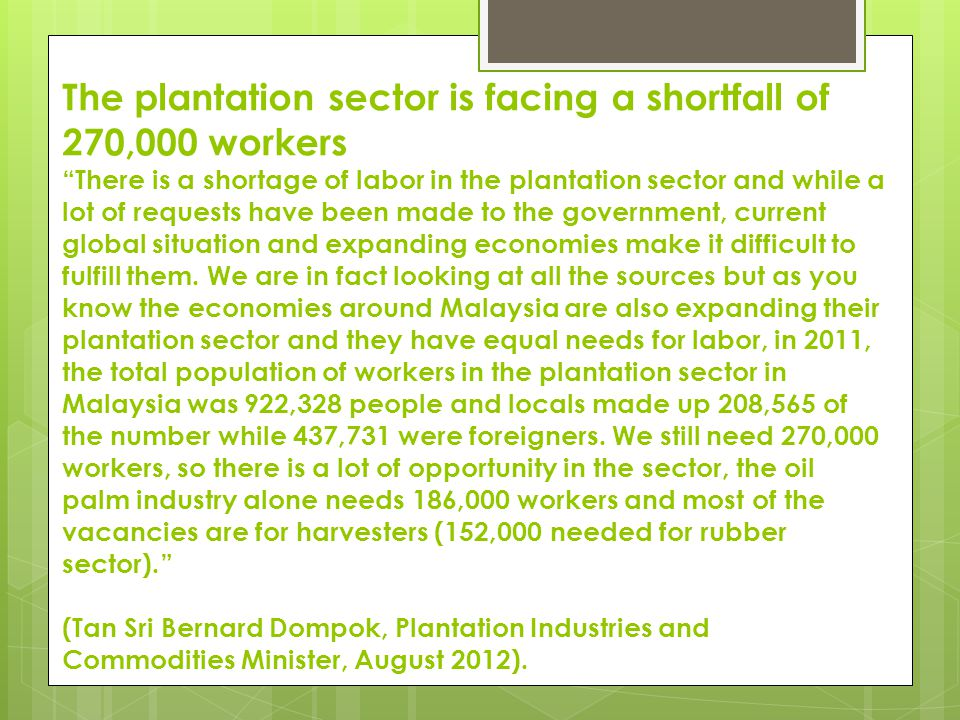 The plantation sector is facing a shortfall of 270,000 workers There is a shortage of labor in the plantation sector and while a lot of requests have been made to the government, current global situation and expanding economies make it difficult to fulfill them.