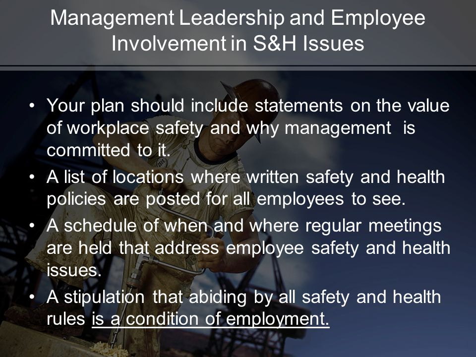 Management Leadership and Employee Involvement in S&H Issues Your plan should include statements on the value of workplace safety and why management is committed to it.