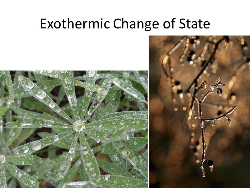 Exothermic Change of State