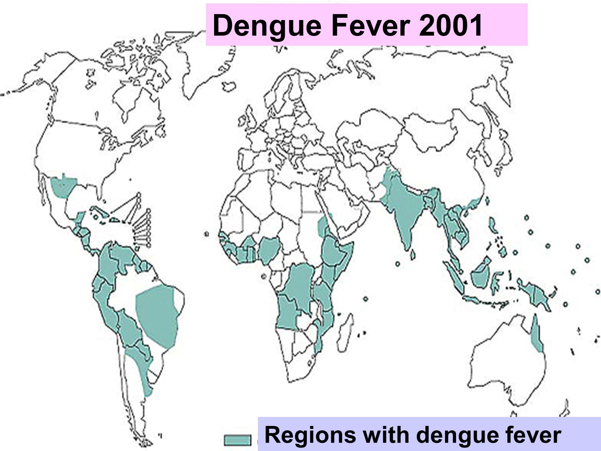 5 Regions with dengue fever Dengue Fever 2001