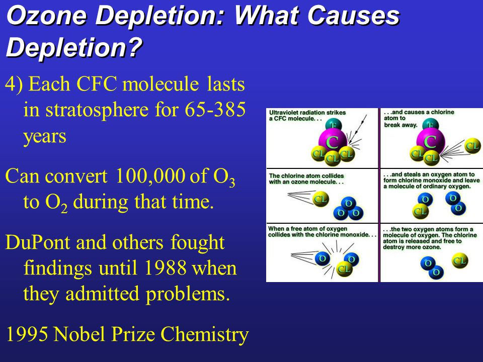 Ozone Depletion: What Causes Depletion? 4) Each CFC molecule lasts in stratosphere for 65-385 years Can convert 100,000 of O 3 to O 2 during that time