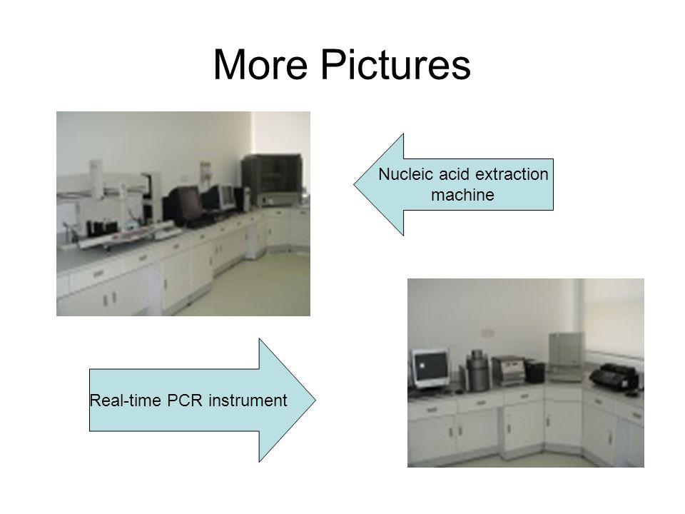 More Pictures Nucleic acid extraction machine Real-time PCR instrument