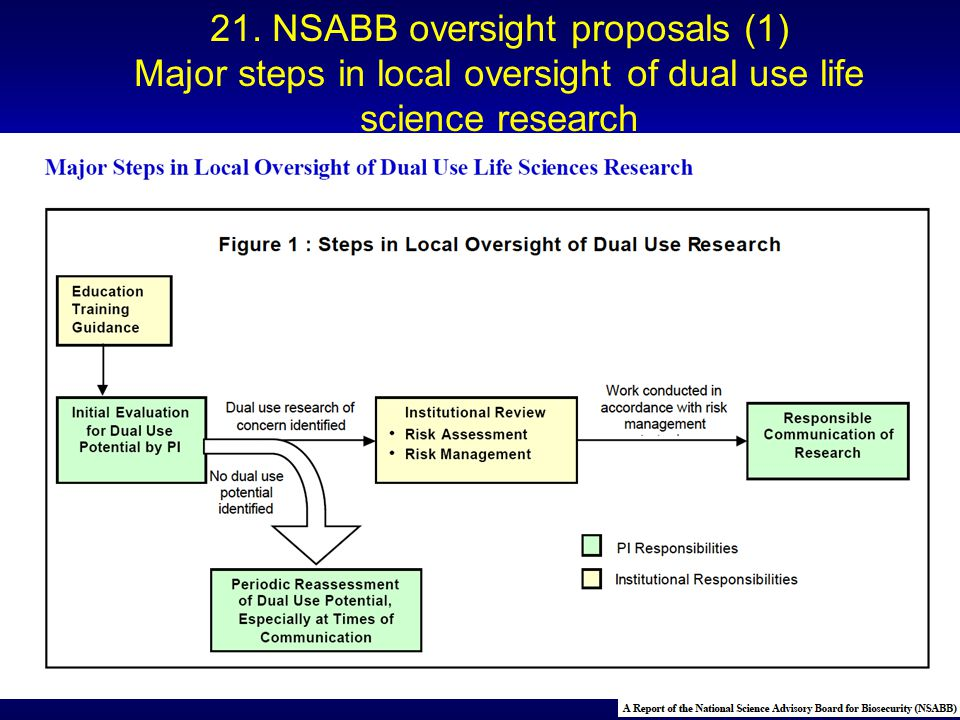 Dual-use research of concern identified Work conducted in accordance with risk management No dual use potential identified 21. NSABB oversight proposa