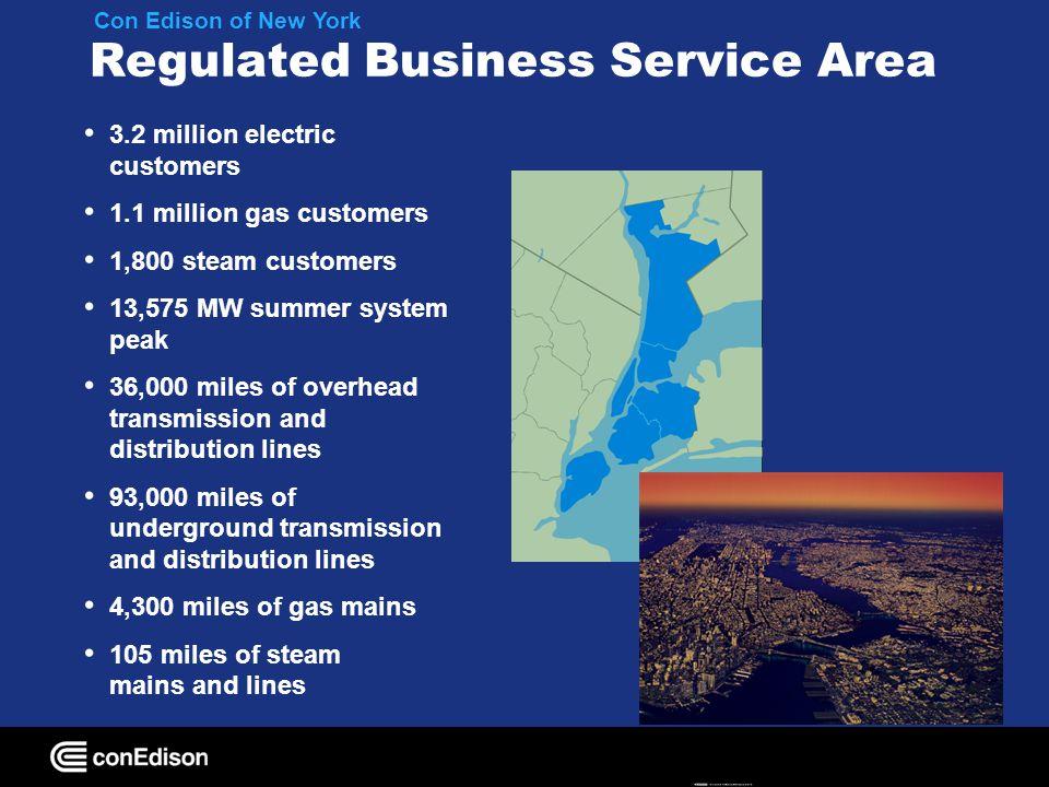 Service Area Peak Load Forecasts 2007 MW