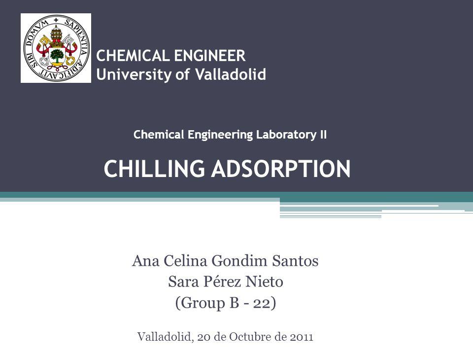 CHEMICAL ENGINEER University of Valladolid Ana Celina Gondim Santos Sara Pérez Nieto (Group B - 22) Valladolid, 20 de Octubre de 2011 Chemical Enginee