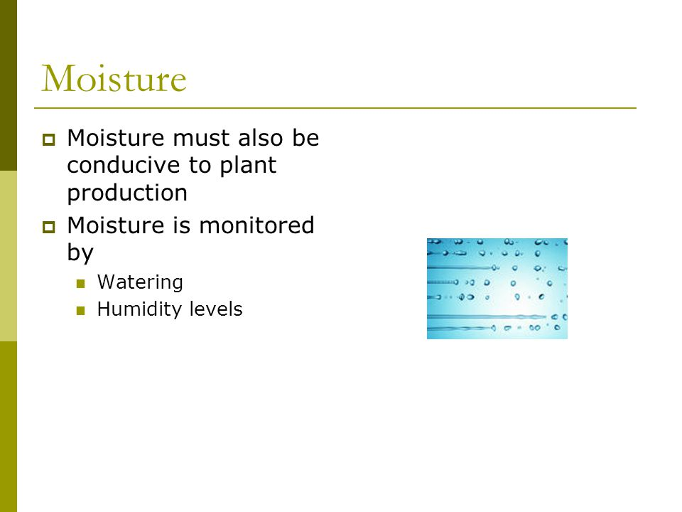 Moisture must also be conducive to plant production Moisture is monitored by Watering Humidity levels