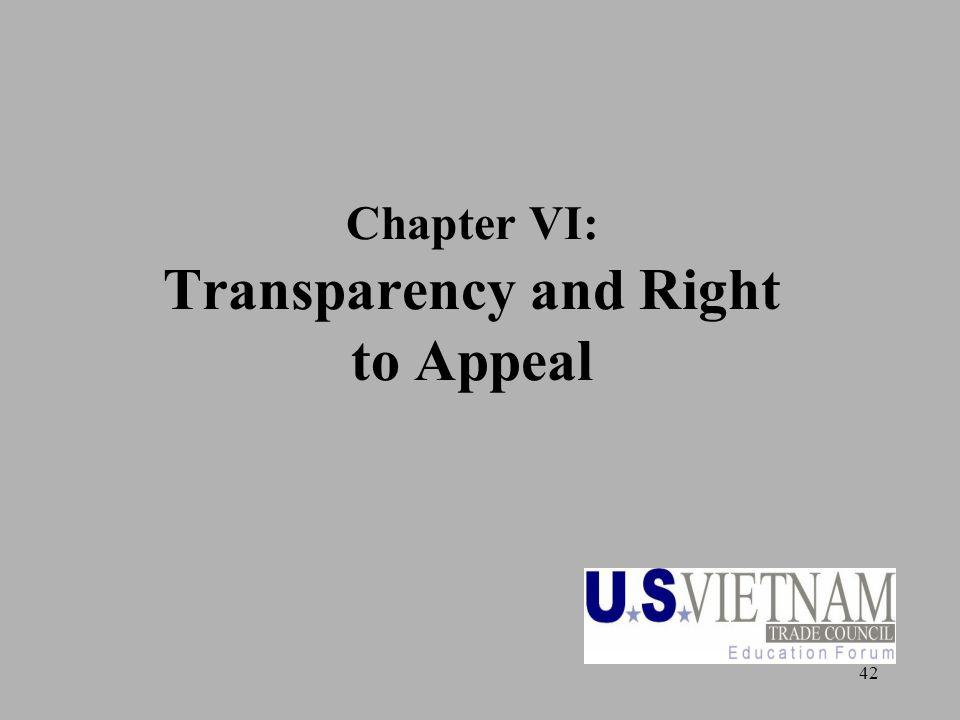 42 Chapter VI: Transparency and Right to Appeal