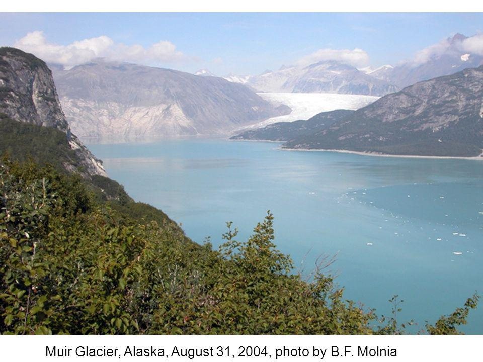 Muir Glacier, Alaska, August 31, 2004, photo by B.F. Molnia