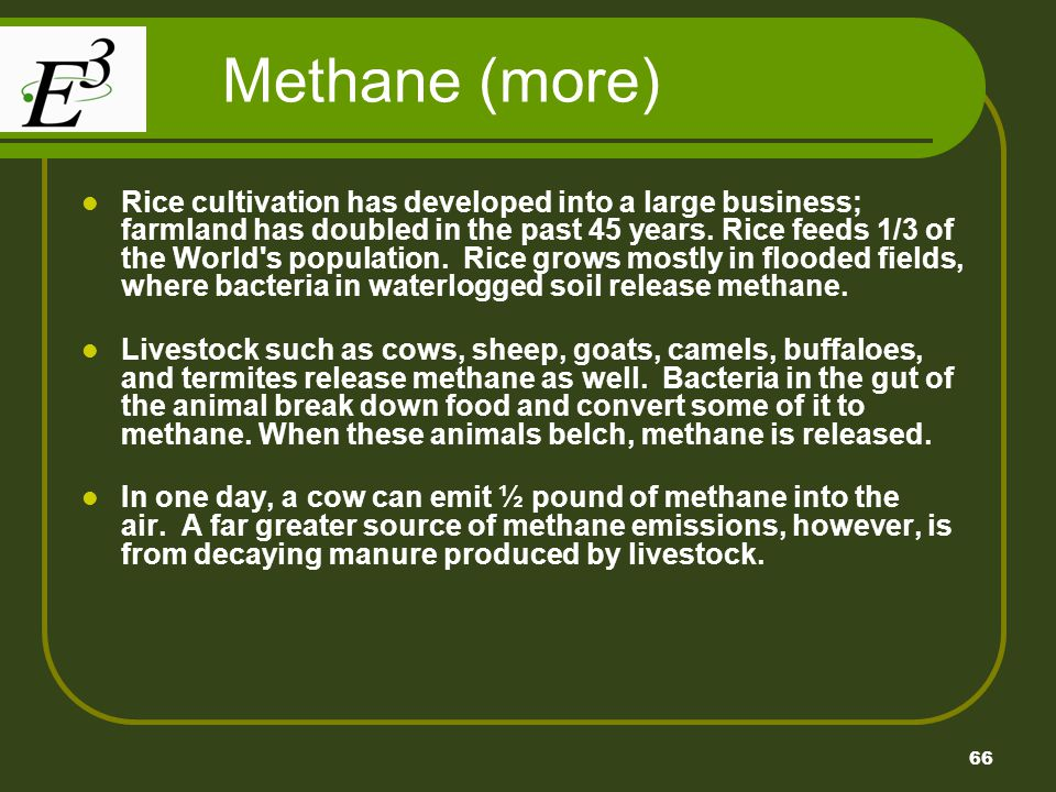 66 Methane (more) Rice cultivation has developed into a large business; farmland has doubled in the past 45 years. Rice feeds 1/3 of the World's popul
