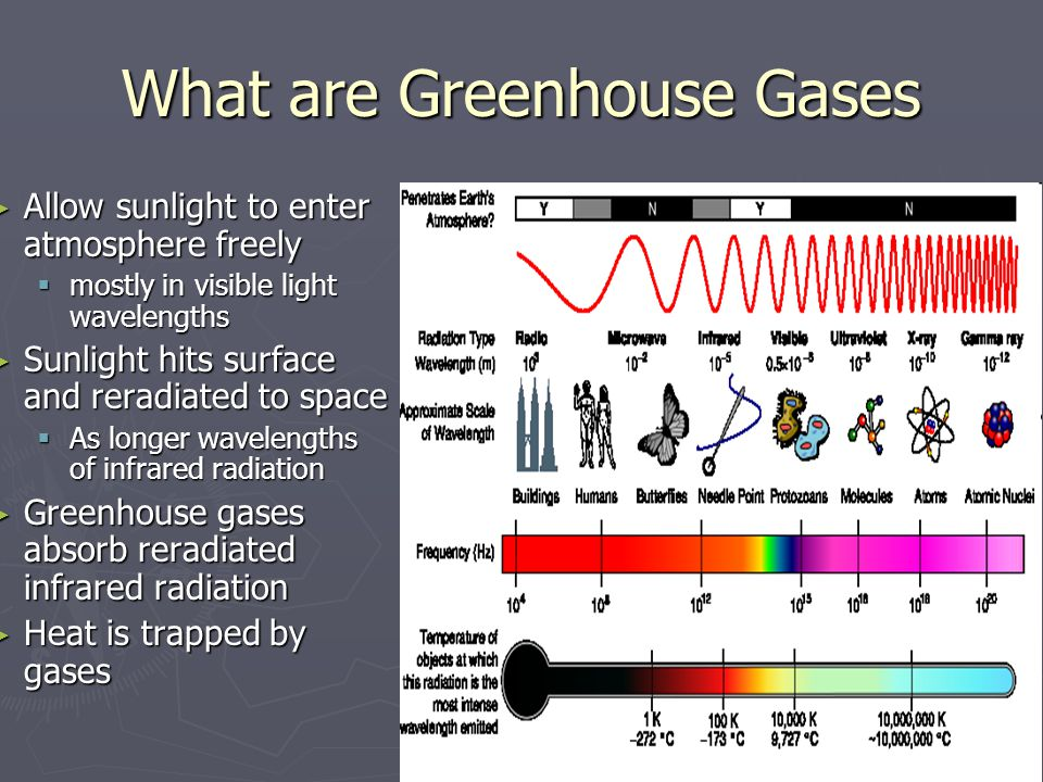 What are Greenhouse Gases Allow sunlight to enter atmosphere freely Allow sunlight to enter atmosphere freely mostly in visible light wavelengths mostly in visible light wavelengths Sunlight hits surface and reradiated to space Sunlight hits surface and reradiated to space As longer wavelengths of infrared radiation As longer wavelengths of infrared radiation Greenhouse gases absorb reradiated infrared radiation Greenhouse gases absorb reradiated infrared radiation Heat is trapped by gases Heat is trapped by gases