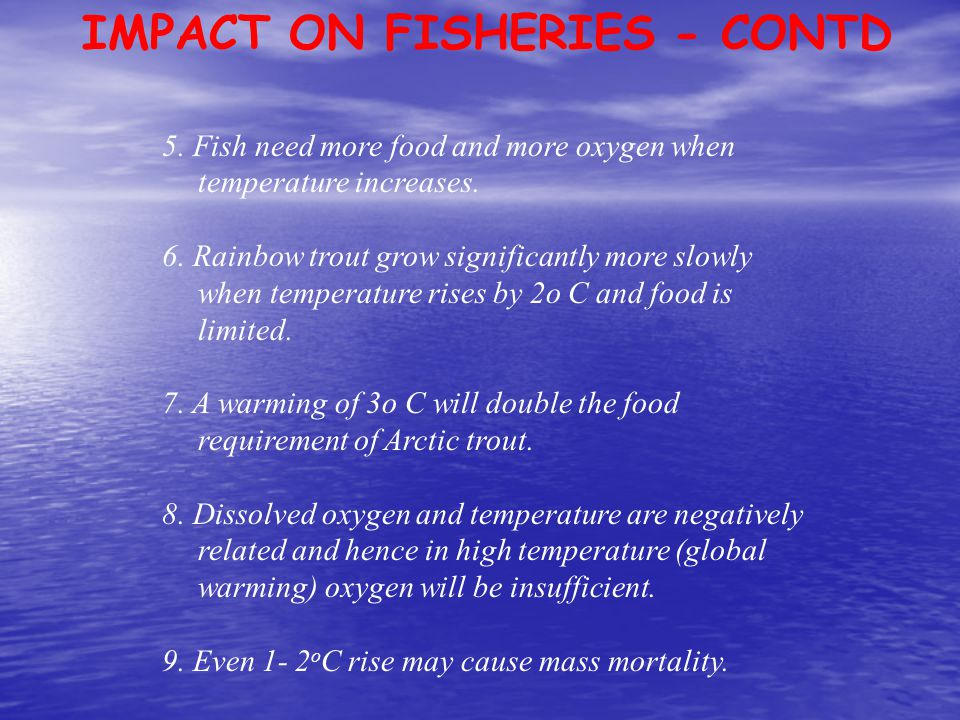 IMPACT ON FISHERIES - CONTD 5. Fish need more food and more oxygen when temperature increases. 6. Rainbow trout grow significantly more slowly when te