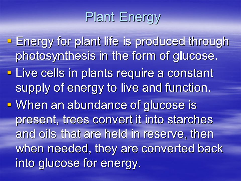 Plant Energy Energy for plant life is produced through photosynthesis in the form of glucose. Energy for plant life is produced through photosynthesis
