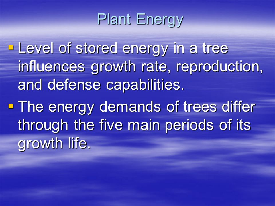 Plant Energy Level of stored energy in a tree influences growth rate, reproduction, and defense capabilities. Level of stored energy in a tree influen