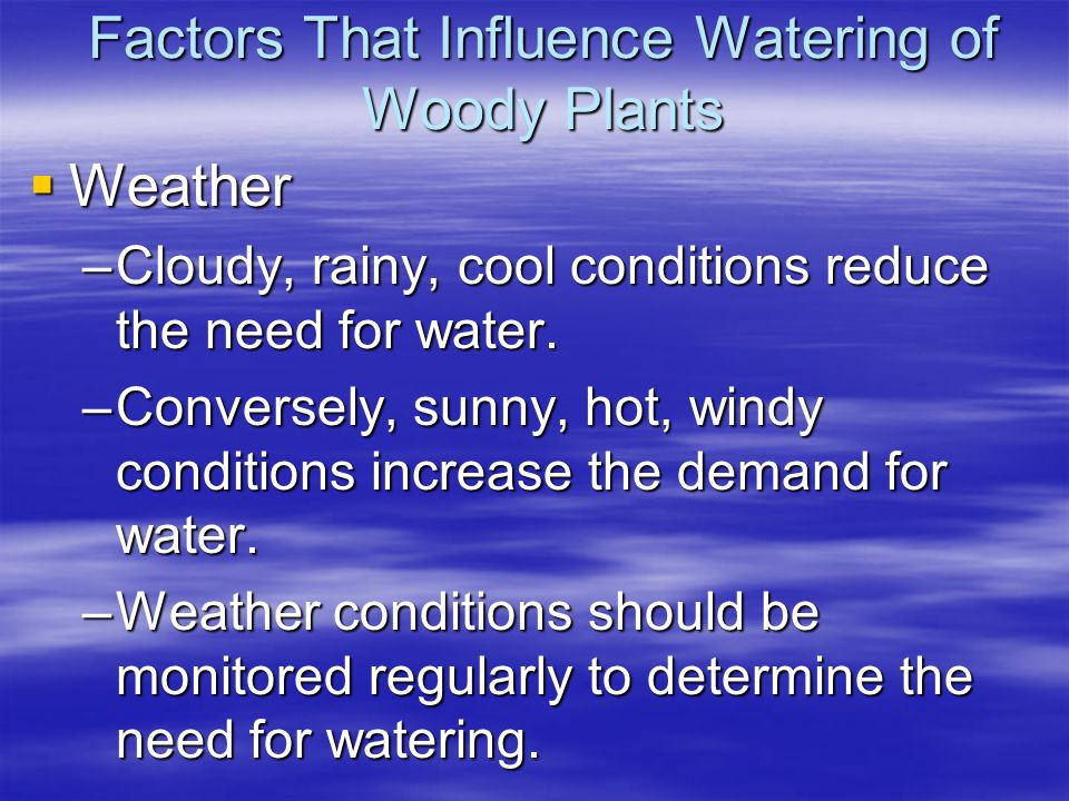Factors That Influence Watering of Woody Plants Weather Weather –Cloudy, rainy, cool conditions reduce the need for water. –Conversely, sunny, hot, wi