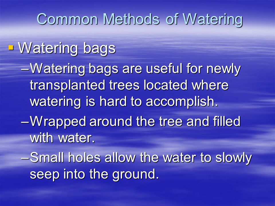 Common Methods of Watering Watering bags Watering bags –Watering bags are useful for newly transplanted trees located where watering is hard to accomp