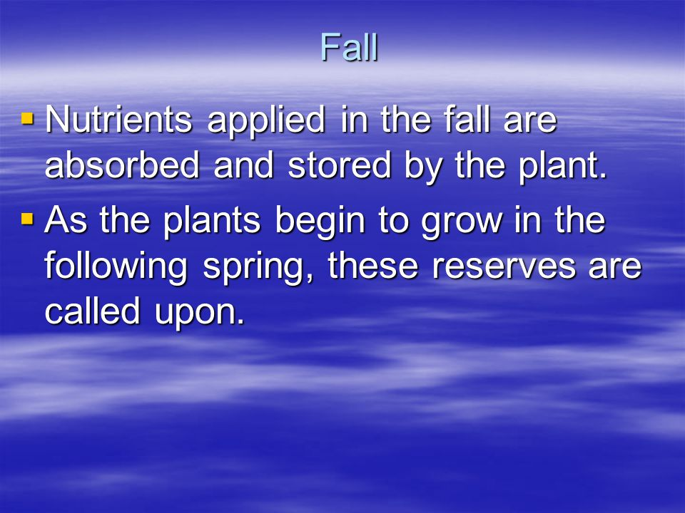 Fall Nutrients applied in the fall are absorbed and stored by the plant. Nutrients applied in the fall are absorbed and stored by the plant. As the pl
