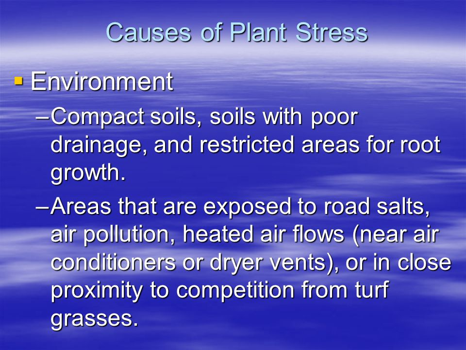 Causes of Plant Stress Environment Environment –Compact soils, soils with poor drainage, and restricted areas for root growth. –Areas that are exposed