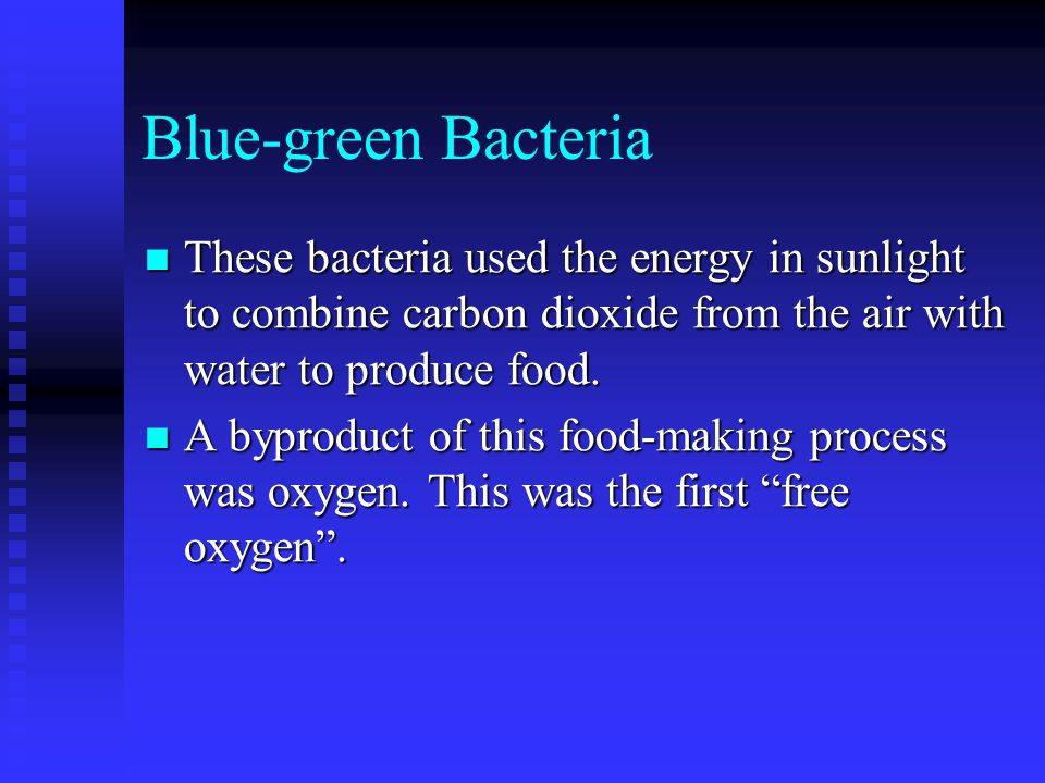 Blue-green Bacteria These bacteria used the energy in sunlight to combine carbon dioxide from the air with water to produce food. These bacteria used