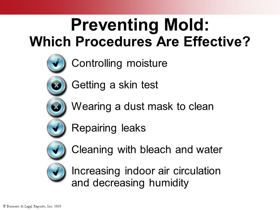 © Business & Legal Reports, Inc. 0809 Preventing Mold: Which Procedures Are Effective.