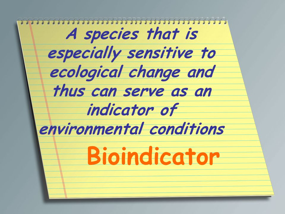 A species that is especially sensitive to ecological change and thus can serve as an indicator of environmental conditions Bioindicator