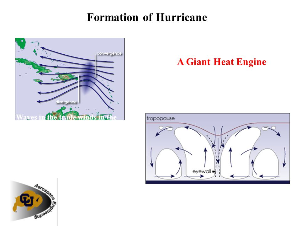 Hurricanes form when the energy released by the condensation of moisture in rising air causes a chain reaction. The air heats up, rising further, whic