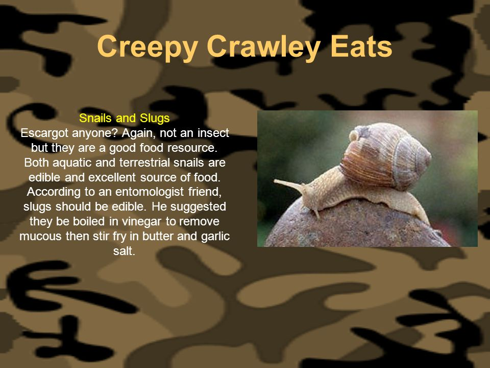 Creepy Crawley Eats Snails and Slugs Escargot anyone? Again, not an insect but they are a good food resource. Both aquatic and terrestrial snails are