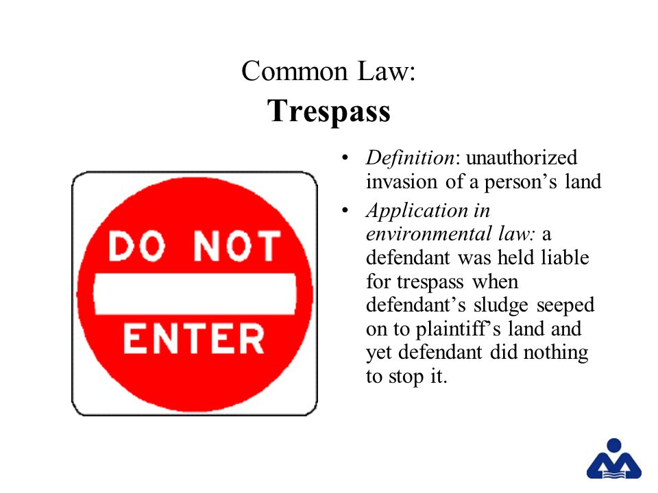 Common Law: Trespass Definition: unauthorized invasion of a persons land Application in environmental law: a defendant was held liable for trespass when defendants sludge seeped on to plaintiffs land and yet defendant did nothing to stop it.