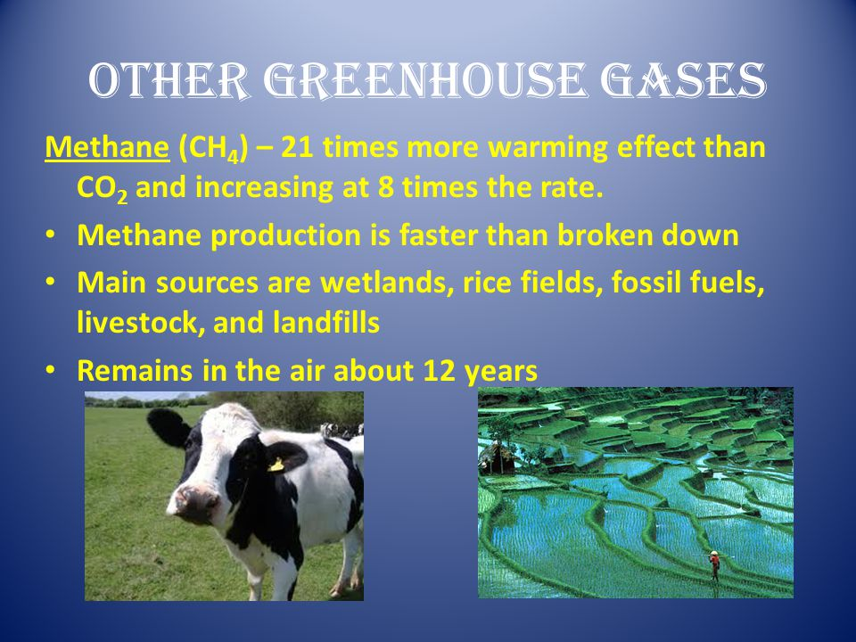 Other Greenhouse Gases Methane (CH 4 ) – 21 times more warming effect than CO 2 and increasing at 8 times the rate. Methane production is faster than