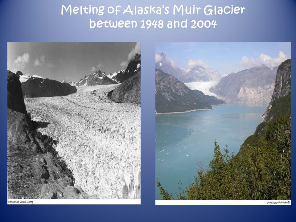 Melting of Alaskas Muir Glacier between 1948 and 2004
