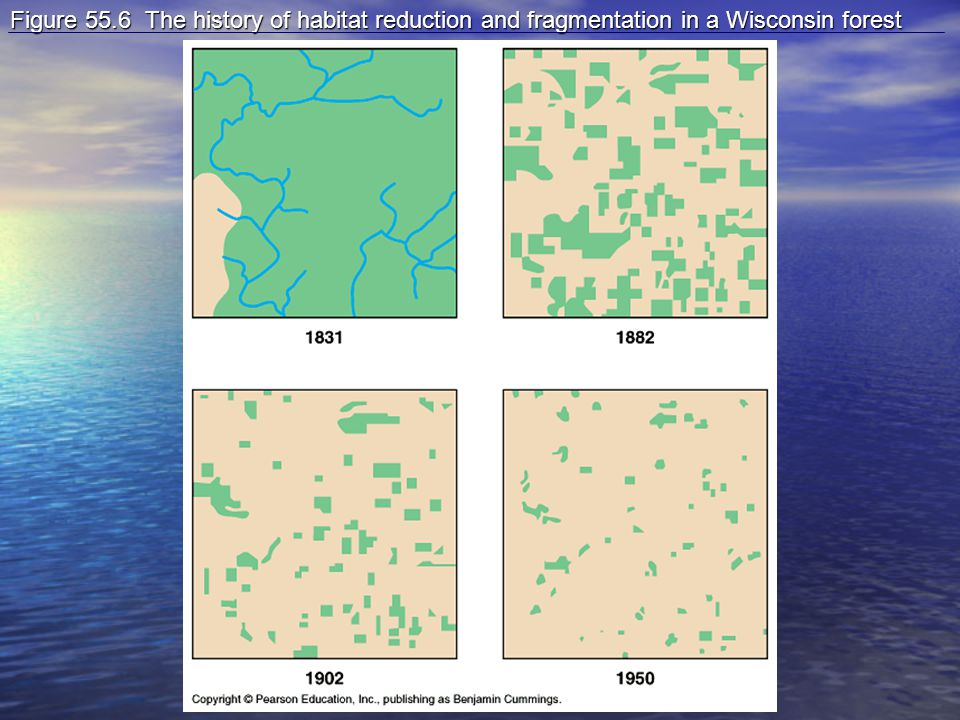 Figure 55.6 The history of habitat reduction and fragmentation in a Wisconsin forest