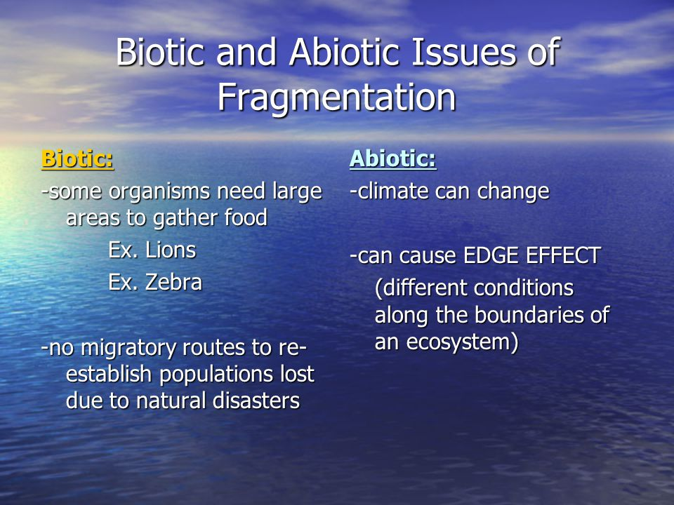 Biotic and Abiotic Issues of Fragmentation Biotic: -some organisms need large areas to gather food Ex. Lions Ex. Zebra -no migratory routes to re- est