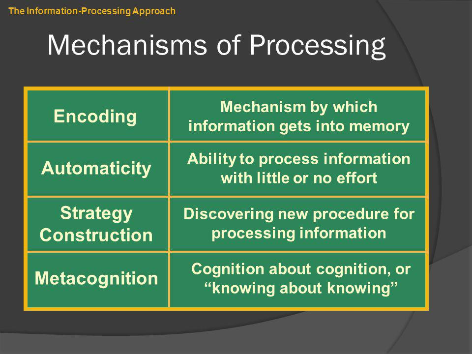Mechanisms of Processing The Information-Processing Approach Encoding Automaticity Strategy Construction Mechanism by which information gets into memo