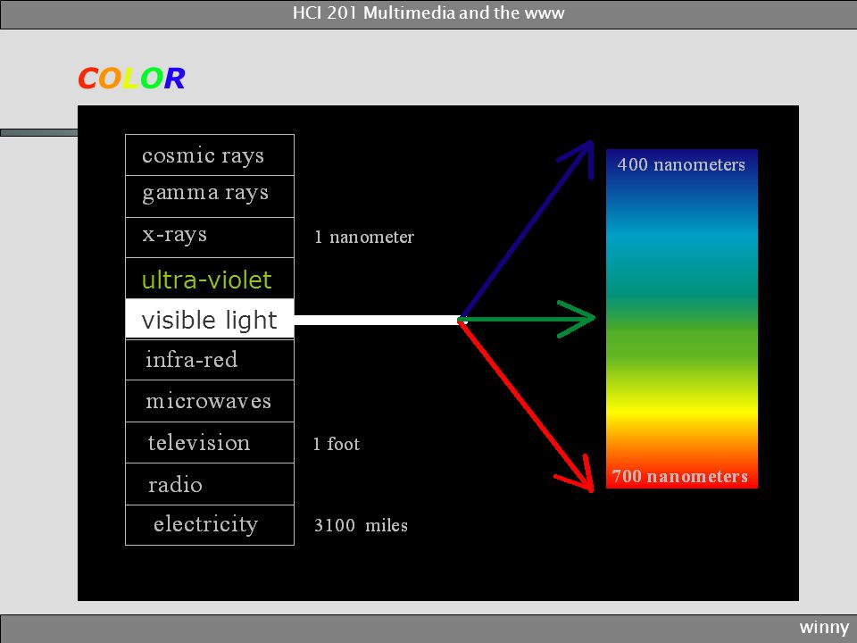 ultra-violet visible light COLORCOLOR winny HCI 201 Multimedia and the www