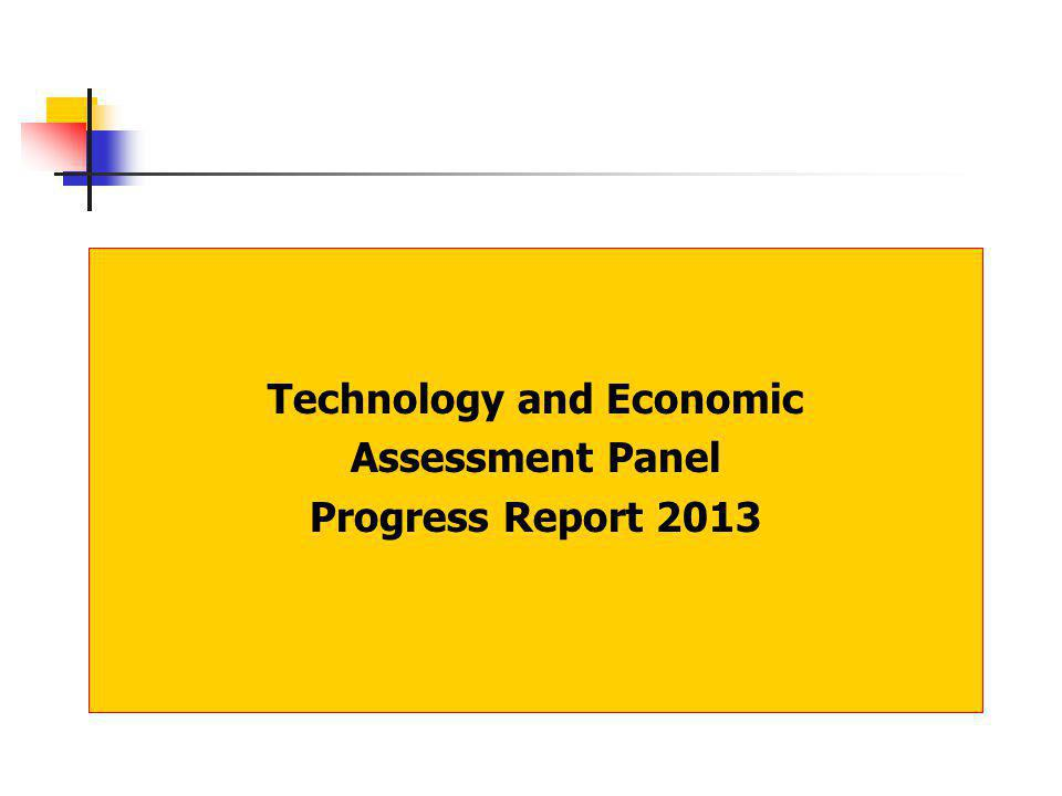 Technology and Economic Assessment Panel Progress Report 2013