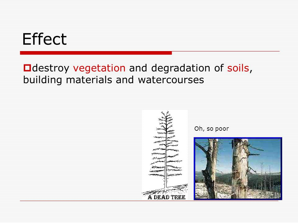 Effect Oh, so poor destroy vegetation and degradation of soils, building materials and watercourses