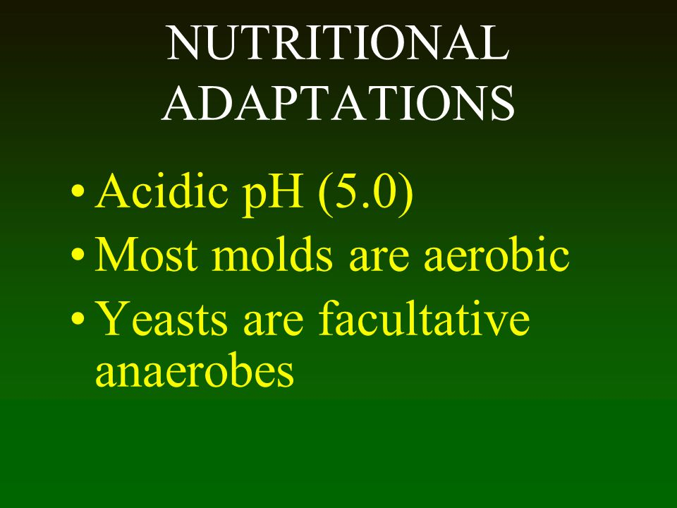 NUTRITIONAL ADAPTATIONS Acidic pH (5.0) Most molds are aerobic Yeasts are facultative anaerobes