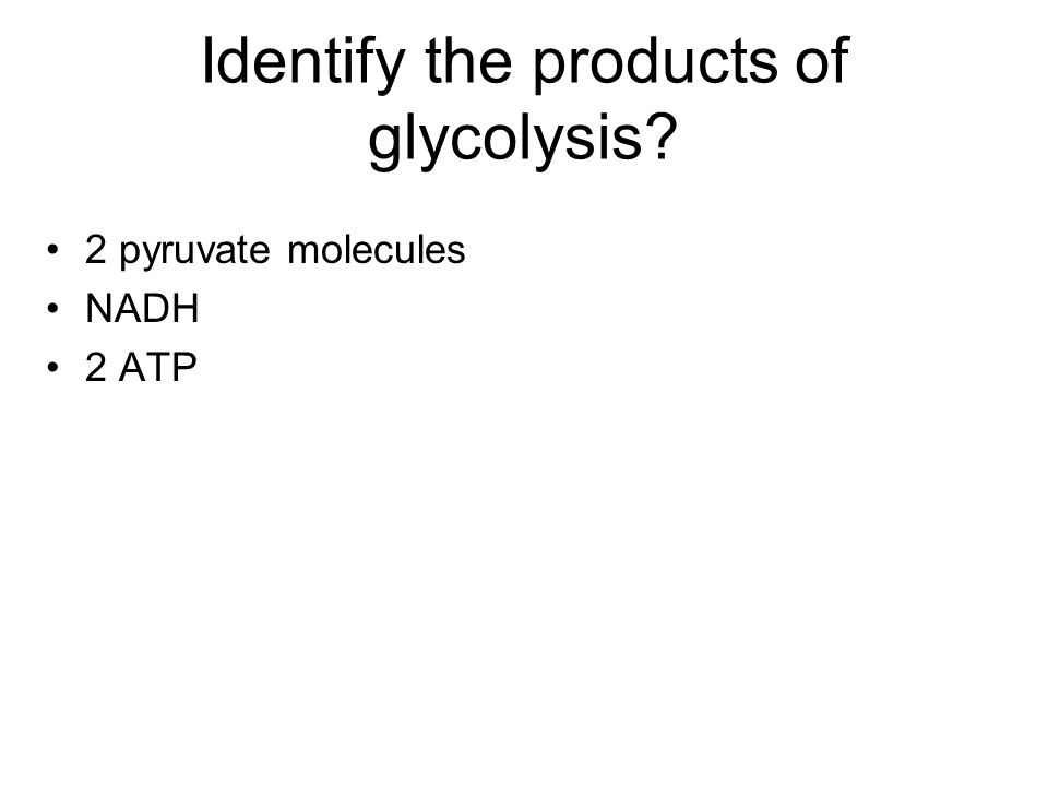 Identify the products of glycolysis? 2 pyruvate molecules NADH 2 ATP