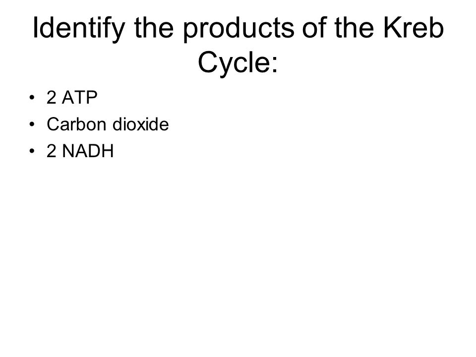 Identify the products of the Kreb Cycle: 2 ATP Carbon dioxide 2 NADH