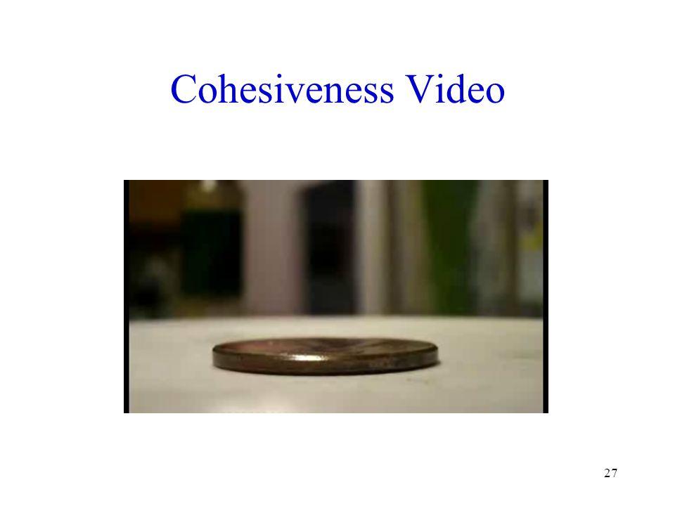Cohesiveness Video 27