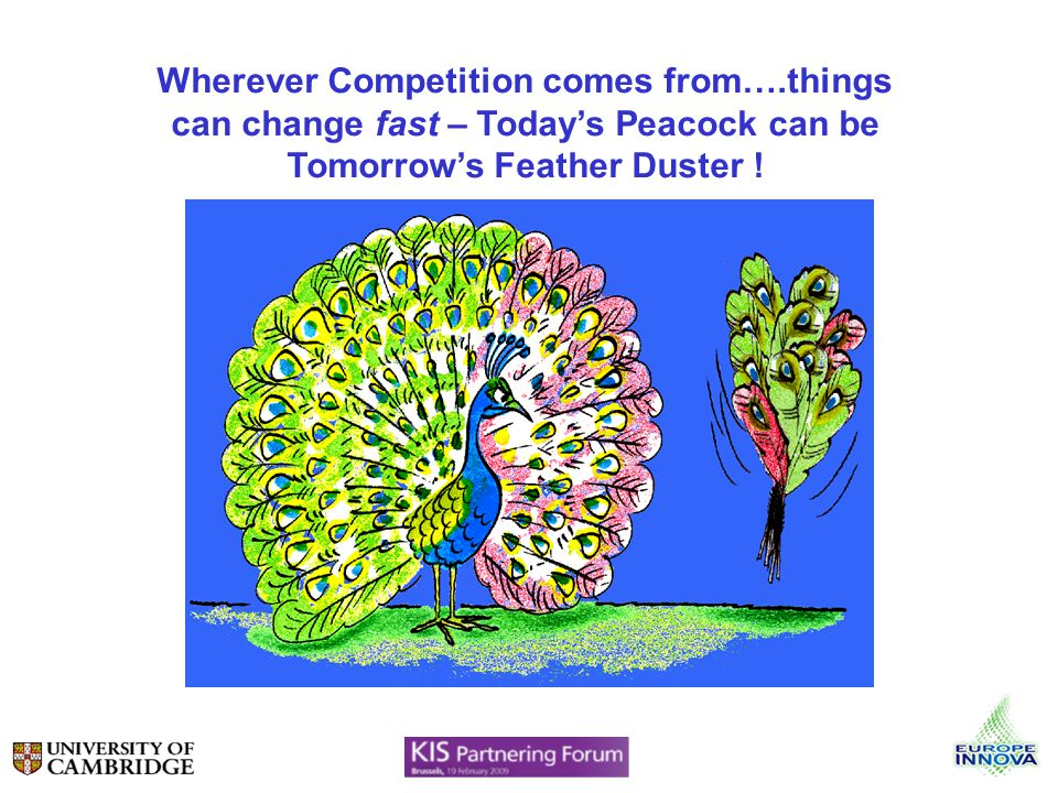 Wherever Competition comes from….things can change fast – Todays Peacock can be Tomorrows Feather Duster !
