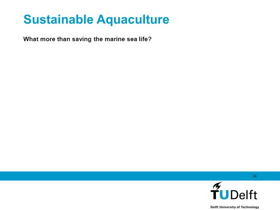 Sustainable Aquaculture What more than saving the marine sea life? 34